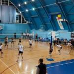 În primul meci din play-off: CSM Bucureşti – Volei Alba Blaj 3-0
