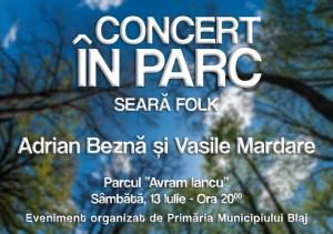 Concert-in-parc-la-Blaj