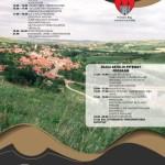 Sâmbătă, 27 iunie:  Primăria Blaj organizează sâmbătă Ziua Petrisatului