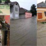 Oameni deznădăjduiți, case, curți și grădini inundate, animale speriate, în urma inundațiilor de la Șona