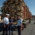 Firmă din Şona amendată cu 38.000 de lei pentru comercializare ilegală de material lemnos