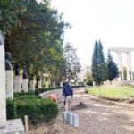 PROIECT: Consiliul Județean Alba va aloca trei milioane de lei pentru reabilitarea Câmpiei Libertății din Blaj