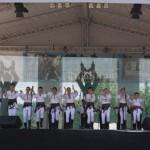 """Festivalului-concurs """"Cultură pentru Cultură"""", ediţia a VIII-a, va debuta duminică la Blaj"""