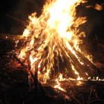 Minori cercetați pentru distrugere după ce au folosit lemne dintr-un gard pentru un foc de tabără la Valea Lungă