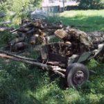 Trei bărbați au fost surprinși de jandarmii de Blaj, în timp ce transportau din Pădurea Cărbunari 4 metri cubi de lemn fără acte de proveniență