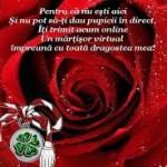Mesaje de 1 martie 2015. Ce sms-uri, felicitări şi mesaje puteţi trimite cu ocazia venirii primăverii | blajinfo.ro