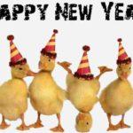 MESAJE SMS de Anul Nou 2018 haioase. Urări și Felicitări amuzante pe care le puteți transmite celor dragi | blajinfo.ro