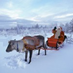 La Blaj, renul lui Moș Crăciun a rămas fără… coarne