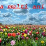 Nume de femei și bărbați care se sărbătoresc de Florii | blajinfo.ro