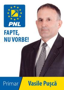 vasile-pusca-candidat-pnl-valea-lunga-locale-2016